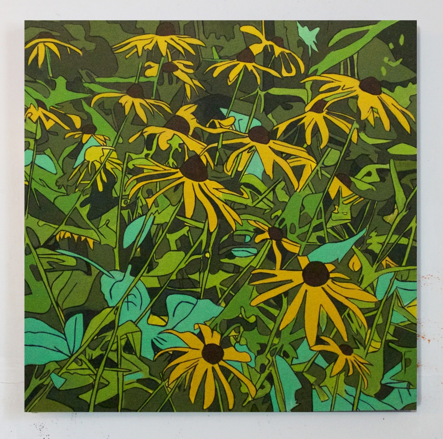 Black Eyed Susans, Oil on Canvas, 24 x 24, 2016